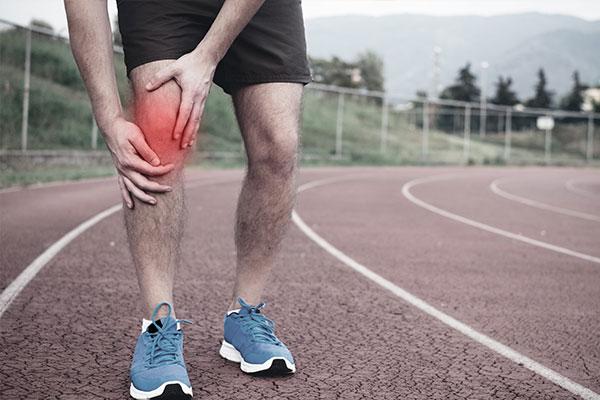 Physioplus Sports Knie